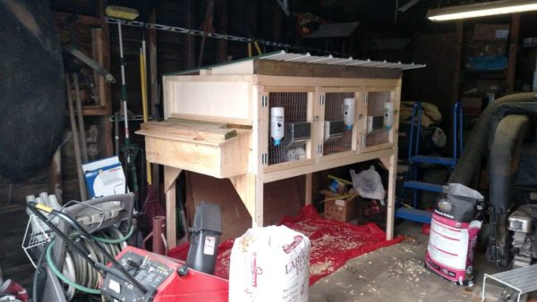 9 Free Rabbit Hutch Plans