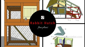 5 Free Rabbit Hutch Plans